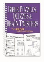 Bible Puzzles, Quizzes & Brain Twisters