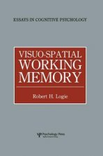 Visuo-Spatial Working Memory