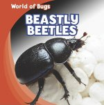 Beastly Beetles
