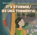 It's Stormy! / Es una tormenta!