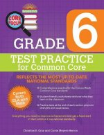 Core Focus Grade 6 Test Practice for Common Core