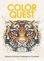 Color Quest Adult Coloring Book