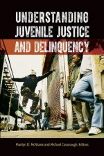 Understanding Juvenile Justice and Delinquency
