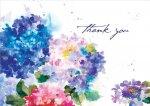 Hydrangeas Thank You Notes