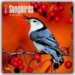Songbirds 2017 Calendar