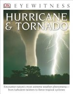 Eyewitness Hurricane & Tornado
