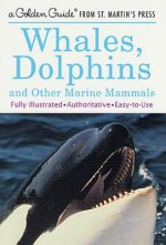 Whales, Dolphins