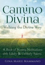 Camino Divina - Walking the Divine Way