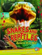 Snakes & Reptiles