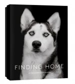 Finding Home Notecards