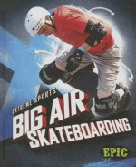 Big Air Skateboarding