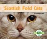 Scottish Fold Cats