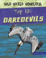 Top 10 Daredevils