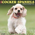 Just Cocker Spaniels 2017 Calendar