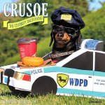 Crusoe the Celebrity Dachshund 2017 Calendar
