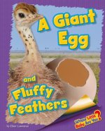 A Giant Egg and Fluffy Feathers