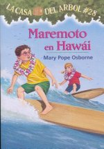 Maremoto en Hawai / High Tide in Hawaii