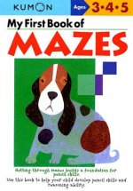 My First Book Of Mazes