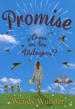 Promise / The Probability of Miracles
