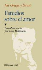 Estudios sobre el amor/ On Love