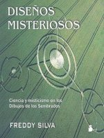 Disenos misteriosos/ Secrets in the Fields