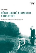 Cómo llegué a conocer a los peces / How i came to know fish