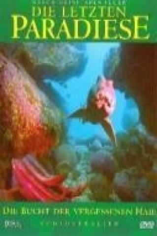 Die letzten Paradiese - Südaustralien: Die Bucht der vergessenen Haie