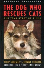 Dog Who Rescues Cats: True Story of Ginny