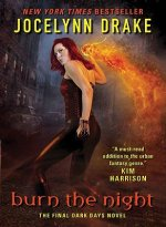 Burn the Night: The Final Dark Days Novel