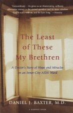 The Least of These My Brethren: A Doctor S Story of Hope and Miracles in an Inner-City AIDS Ward