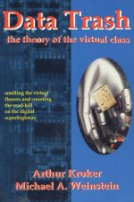 Data Trash: The Theory of Virtual Class