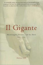 Il Gigante: Michelangelo, Florence, and the David 1492-1504