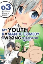 My Youth Romantic Comedy Is Wrong, As I Expected @ comic, Vol. 3 (manga)