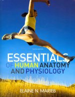 Essentials of Human Anatomy and Physiology [With Brief Atlas of the Human Body and Workbook]