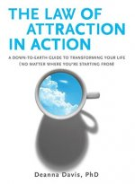 The Law of Attraction in Action: A Down-To-Earth Guide to Transforming Your Life (No Matter Where You're Starting From)