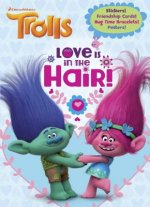 Trolls Full-Color C&a Plus Stickers and Cards (DreamWorks Trolls)