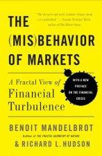 Misbehavior of Markets