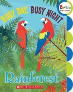 Busy Day, Busy Night: Rain Forest