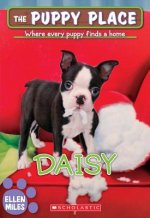 Daisy (the Puppy Place #38)