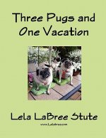 Three Pugs and One Vacation