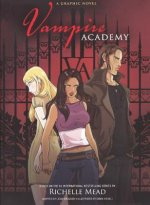 Vampire Academy: A Graphic Novel