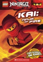 Kai: Ninja of Fire