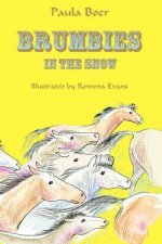 Brumbies: In the Snow