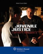 Juvenile Justice, Third Edition