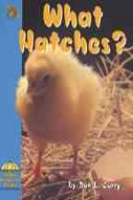 What Hatches?