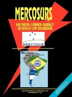 Mercosur (Southern Common Market) Business Law Handbook) (Argentina Paraguay Uruguay and Brazil).