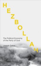 Hezbollah: The Political Economy of the Party of God