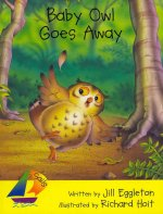 Rigby Sails Early: Leveled Reader Baby Owl Goes Away