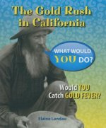 The Gold Rush in California: Would You Catch Gold Fever?