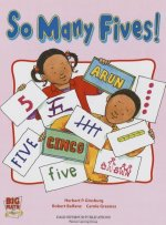 Big Math for Little Kids Kindergarten Classbook Book 1 So Many Five's 2003c